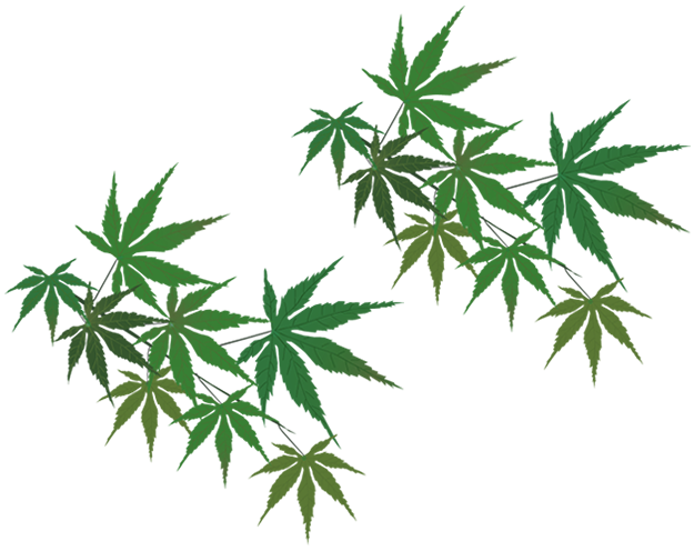 Left Leaf Logo Background